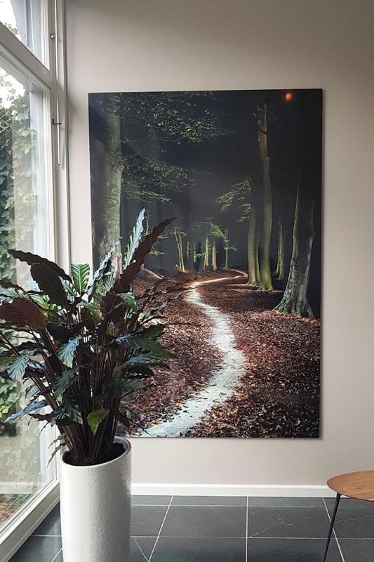 Veluwe_lightpainting_aan-de-muur