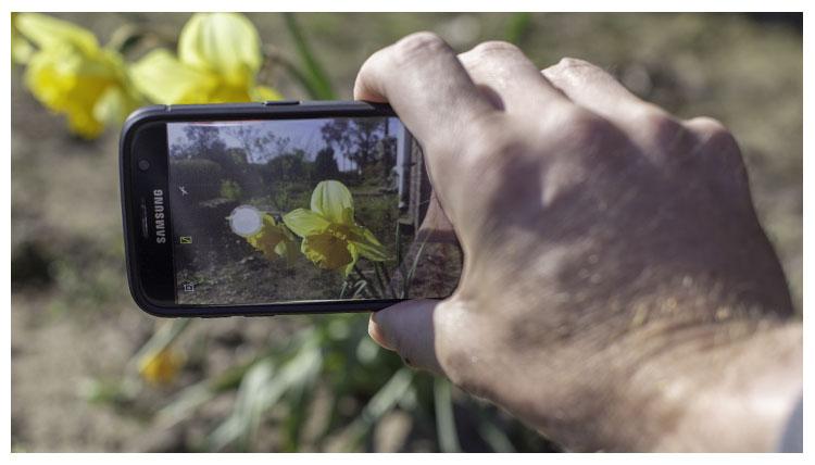 filmen-met-je-mobile